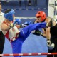 24.06.2017. VarazdinSvetsko prvensto u savate boksuPhoto: Jurinec photography