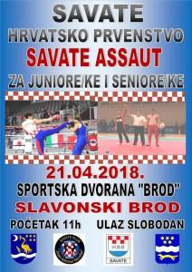 HRVATSKO SAVATE PRVENSTVO 2018 U SLAVONSKOM BRODU -PLAKAT